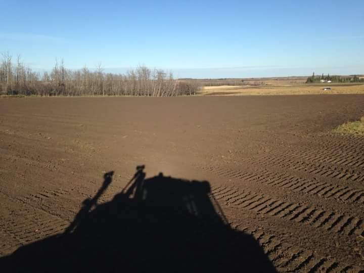 Precision Contractors   Earthworks   Site Reclamation Projects   D6T silouette